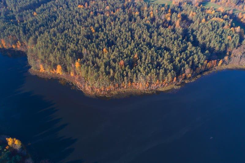 Vista da altura na costa do outono da opinião superior de Dolysets do lago Região de Pskov, Rússia fotos de stock royalty free
