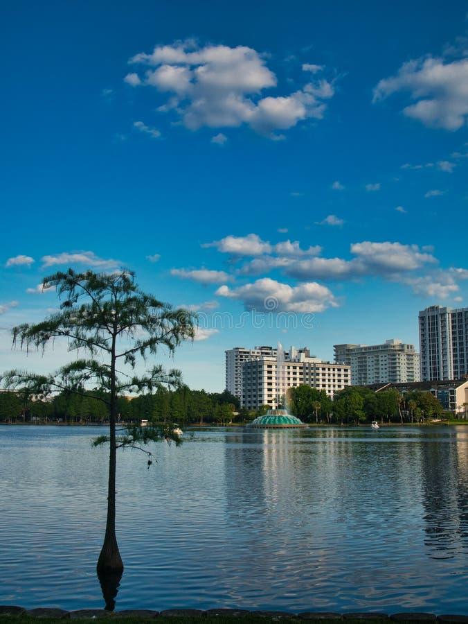 A vista da borda do lago imagens de stock
