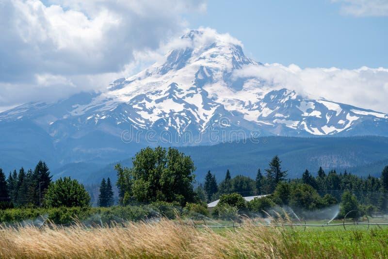 Vista da capa do Mt perto de Hood Rivver Oregon Sistemas de extinção de incêndios agrícolas que molham a terra no primeiro plano imagens de stock