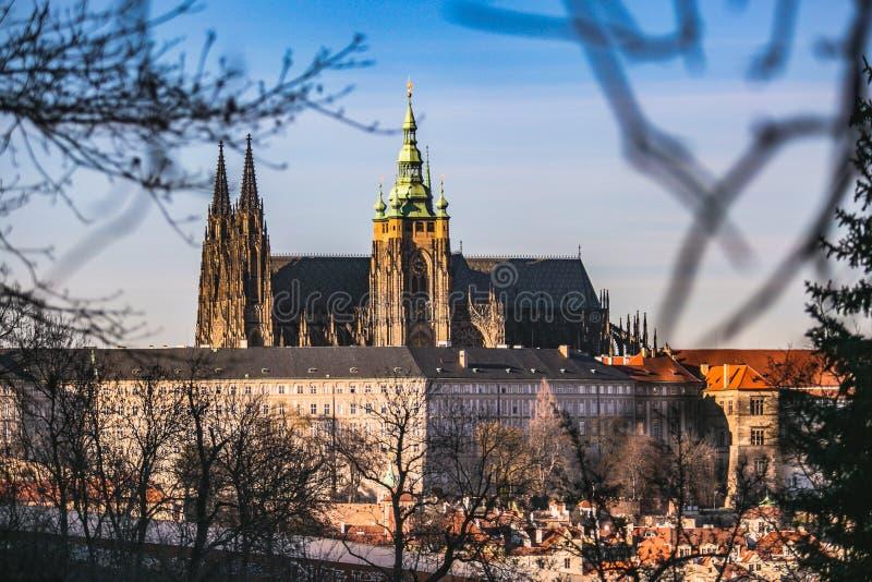 Vista da catedral famosa do St Vitus em Praga imagens de stock royalty free