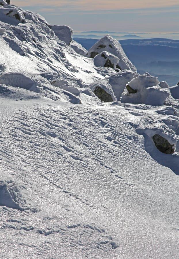 Vista da Chopok - Tatras basso, Slovacchia fotografia stock libera da diritti
