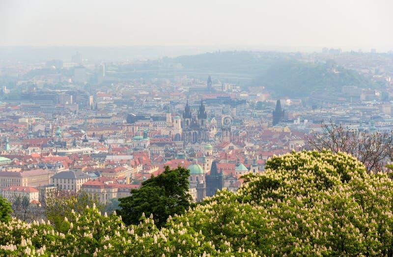 Vista da cidade velha de Praga (olhar fixo Mesto) fotografia de stock