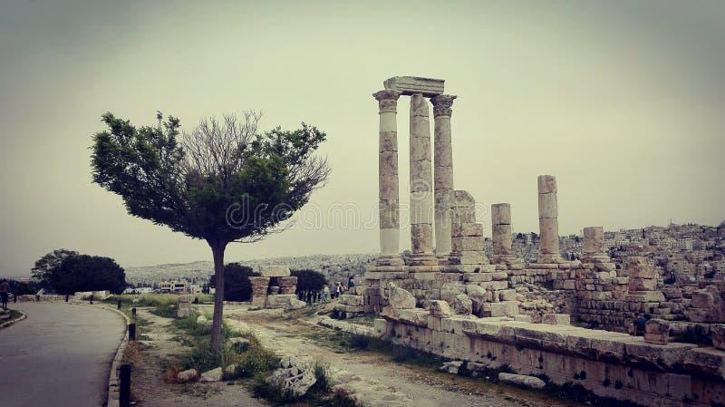 Vista da citadela velha de Amman, Jordânia imagem de stock