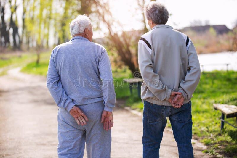 Vista da dietro di un figlio adulto che cammina con suo padre senior fotografia stock libera da diritti