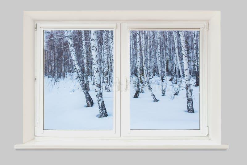 Vista da janela à paisagem do inverno fotografia de stock royalty free