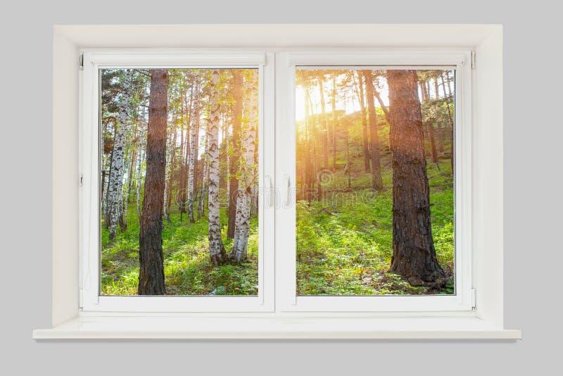 Vista da janela no por do sol na floresta fotografia de stock royalty free