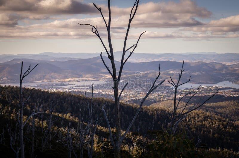 Vista da montagem Wellington que negligencia Hobart, Tasmânia, Austrália imagem de stock royalty free