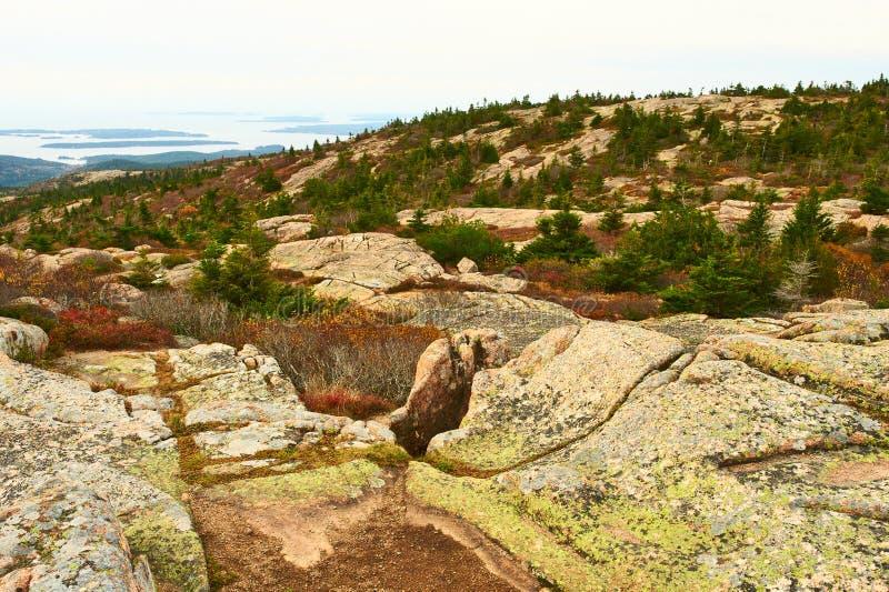 Vista da montanha de Caddilac no parque nacional do Acadia imagem de stock royalty free
