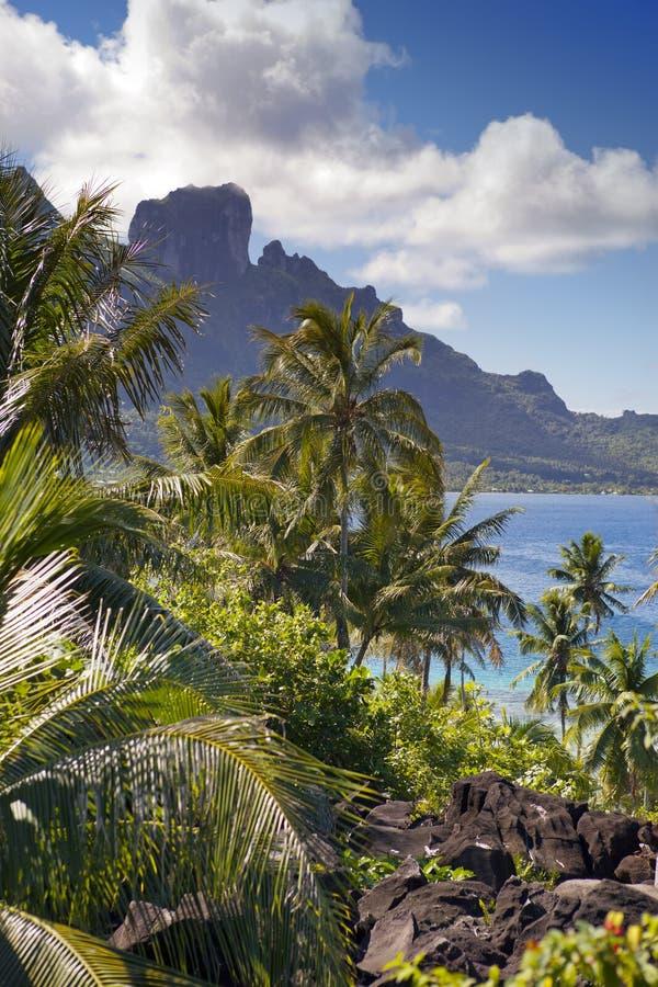 Vista da montanha de Otemanu através das palmas e do oceano Bora-Bora polynesia fotos de stock royalty free