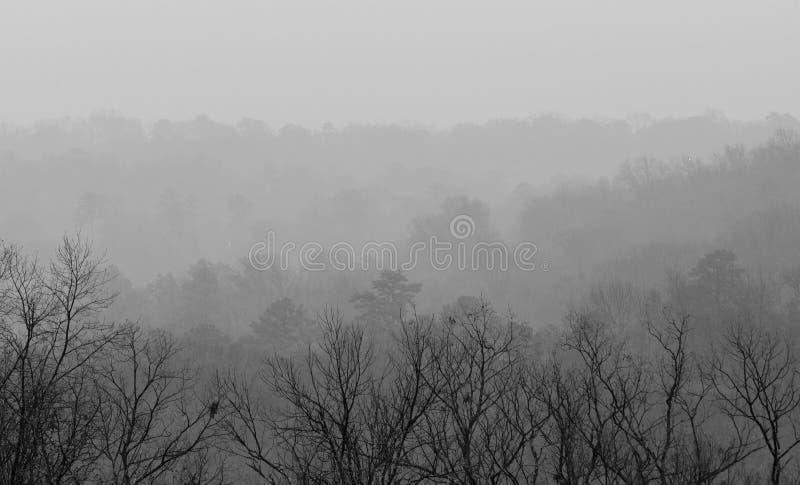 Vista da montanha de Ruffner em um dia nevoento imagens de stock