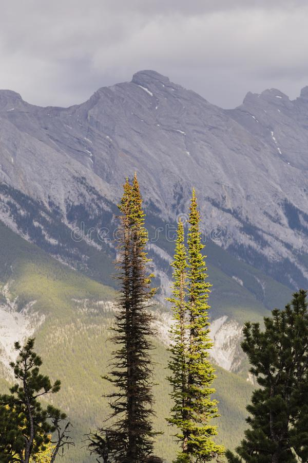Vista da montanha do enxofre em Banff, Canadá imagens de stock