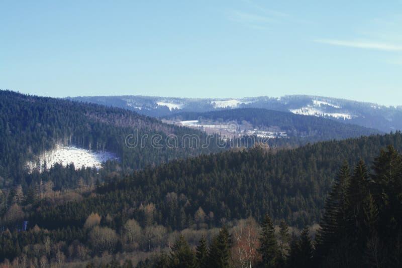Vista da montanha Grosser Osser no Parque Nacional Floresta Bávaro, Alemanha fotos de stock