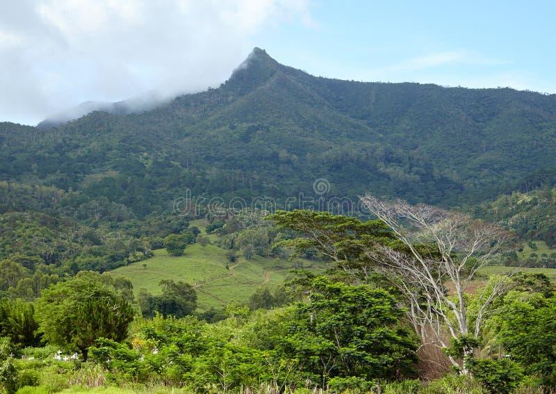 Vista da montanha Le Morne imagens de stock