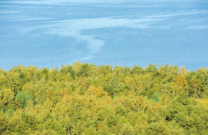 Vista da parte superior, da floresta e da água fotos de stock