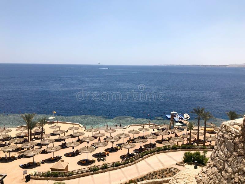 Vista da parte superior a um Sandy Beach bonito com vadios do sol, camas do sol e guarda-sóis em férias em um c exótico morno tro fotografia de stock royalty free