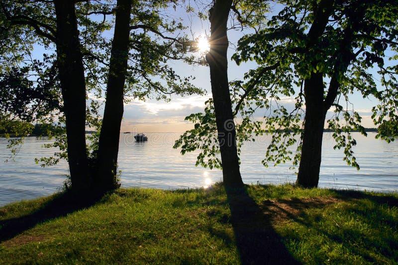 Vista da praia através das árvores imagem de stock royalty free