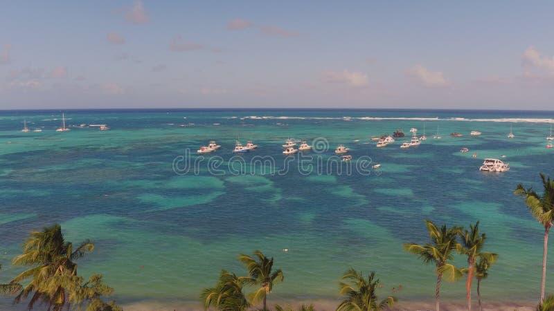 Vista da praia com as palmeiras na parte superior imagem de stock