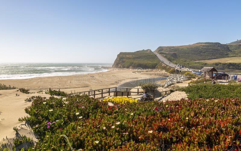 Vista da praia e dos penhascos na estrada 1 perto de Davenport, Califórnia, Estados Unidos da América, America do Norte imagem de stock