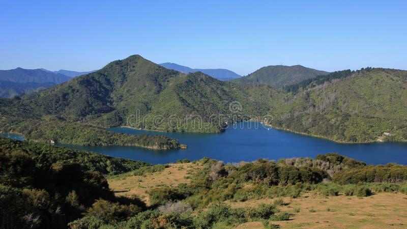 Vista da rainha Charlotte Track, Nova Zelândia fotografia de stock royalty free