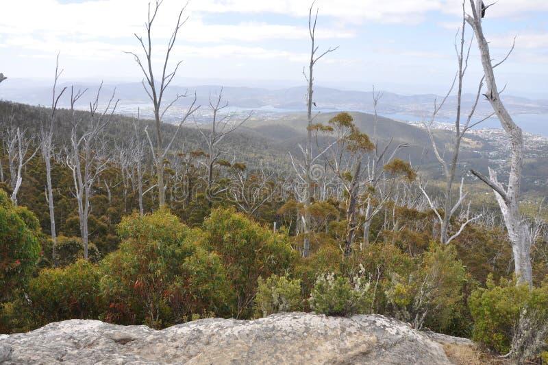 Vista da rocha do Sphinx em Mt Wellington, Hobart. fotografia de stock royalty free