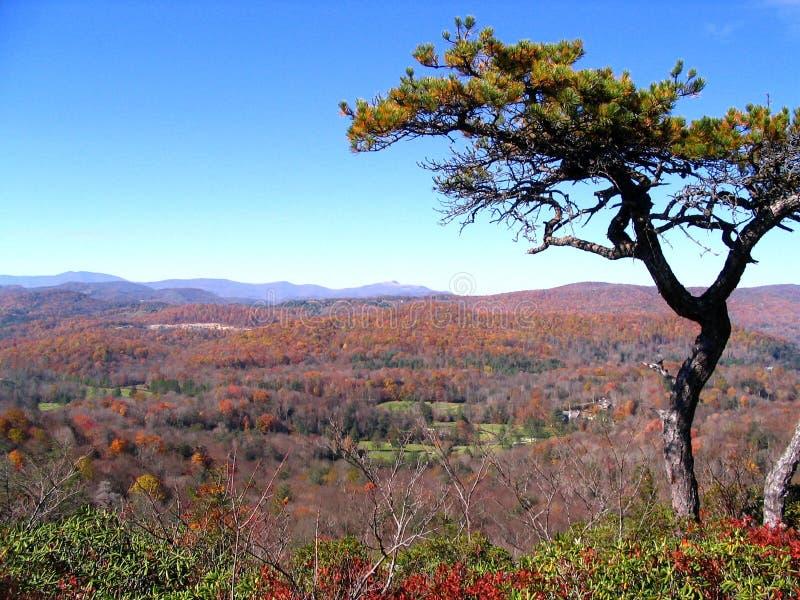 Vista da rocha lisa do Parkway azul de Ridge imagem de stock