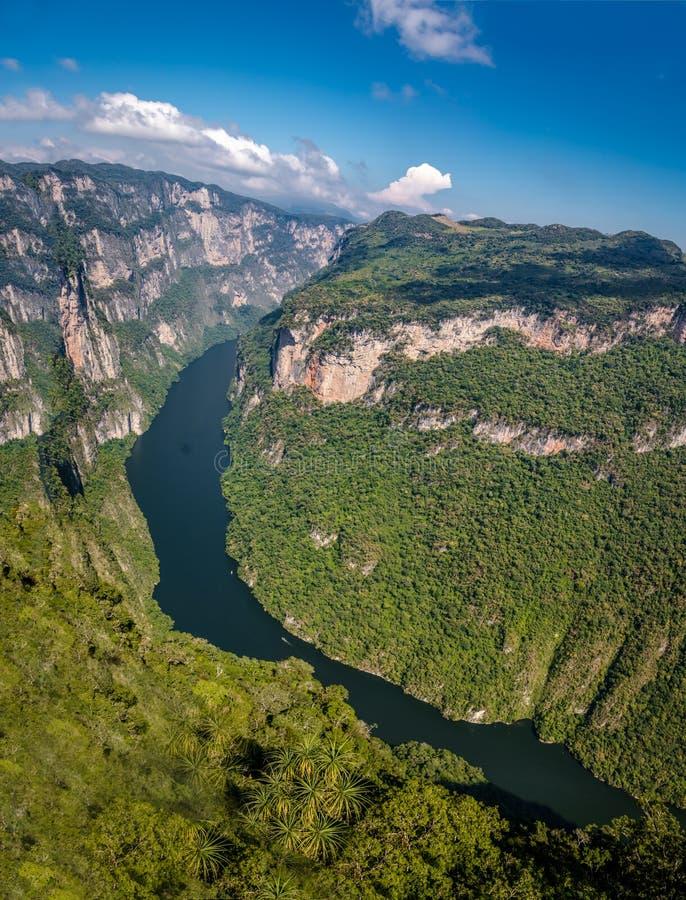 Vista da sopra il canyon di Sumidero - il Chiapas, Messico fotografie stock libere da diritti