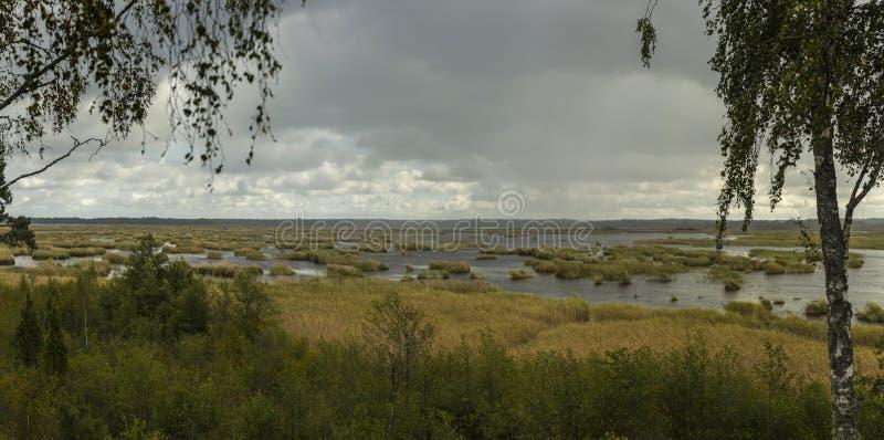 Vista da torre da ornitologia em Kanieris, Letónia Céus do rosa do por do sol, rio com reflexão azul profunda e árvores imagens de stock