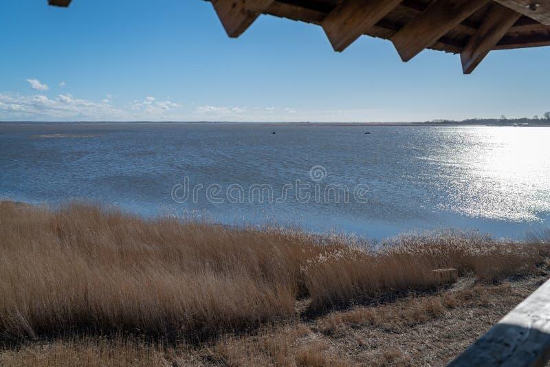 Vista da torre da ornitologia em um grande lago fotos de stock