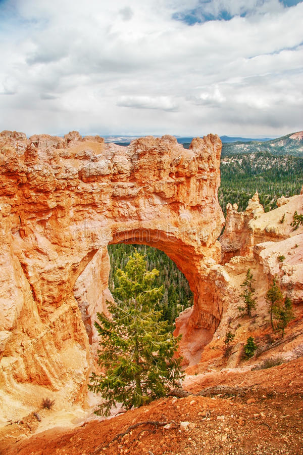 Vista dal punto di vista del canyon di Bryce l'utah U.S.A. fotografia stock libera da diritti