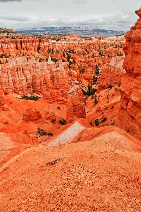 Vista dal punto di vista del canyon di Bryce l'utah U.S.A. immagini stock libere da diritti