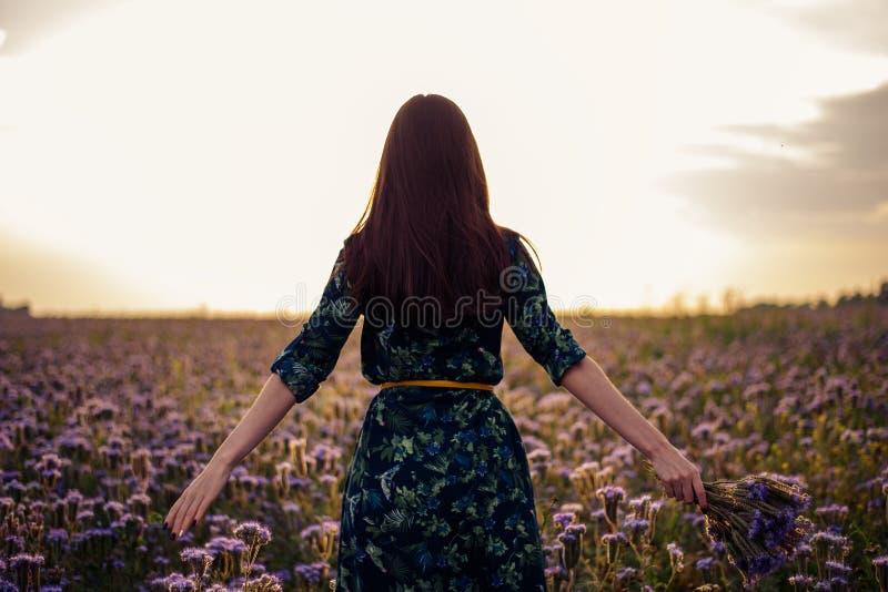 Vista dal retro di una donna castana con un mazzo dei fiori porpora su un giacimento di fiore nel tramonto, libertà, sogni fotografia stock libera da diritti