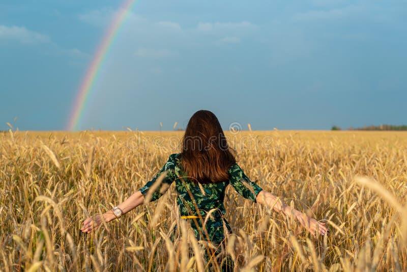 Vista dal retro di una giovane donna in un campo con le mani del grano ai lati delle orecchie sui precedenti dell'arcobaleno, lib immagini stock