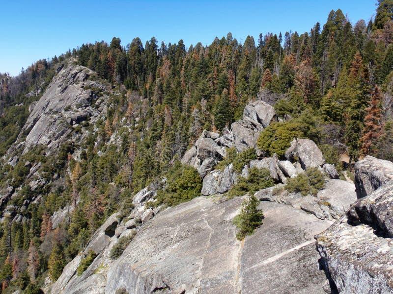 Vista dalla cima di Moro Rock con la sue struttura della roccia compatta, montagne di trascuratezza e valli - parco nazionale del fotografie stock libere da diritti