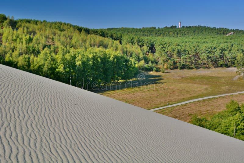 Vista dalla duna di Parnidis sopra la foresta Nida di Nida lithuania fotografia stock libera da diritti
