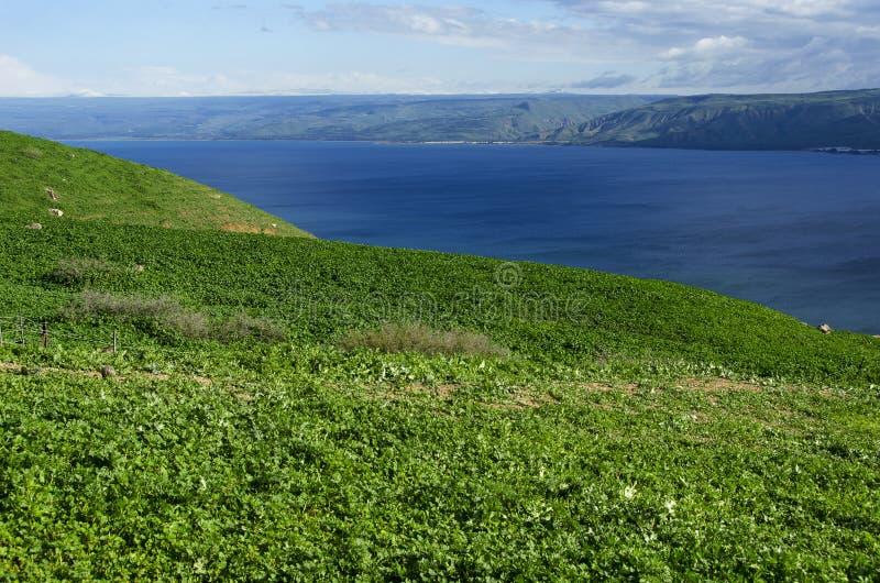 Vista dalla montagna al mare della Galilea fotografia stock
