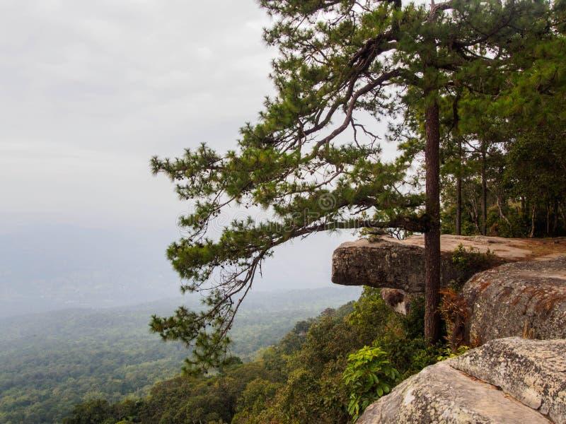 Vista dalla scogliera in parco nazionale in Tailandia immagini stock libere da diritti