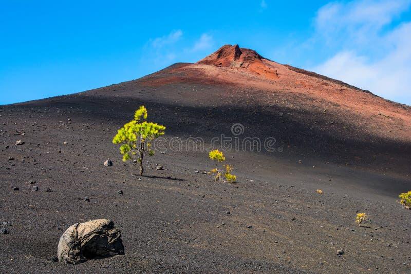 Vista das arenas Negras perto do vulcão Teide, paridade do nacional de Teide foto de stock royalty free