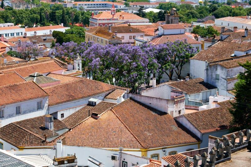 A vista das casas residenciais da cidade que cercam a catedral (SE) de Évora portugal imagens de stock royalty free