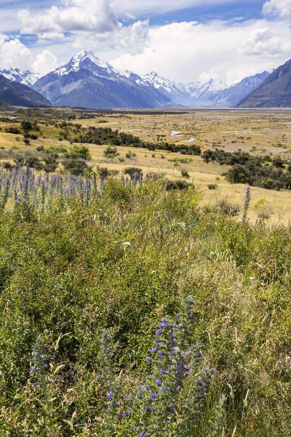 Vista das montanhas altas alpinas e o platô do cozinheiro National Park da montagem fotografia de stock