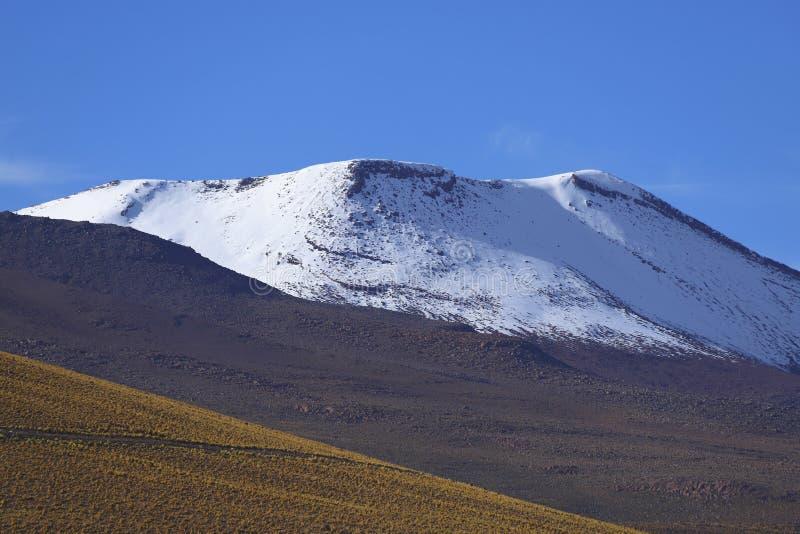 Vista das montanhas de Andes e dos vulcões, deserto de Atacama, o Chile fotografia de stock royalty free