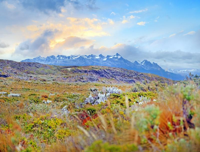 Vista das montanhas de Patagônio de uma ilha coberta pela vegetação verde e amarela no canal do lebreiro, contra a foto de stock