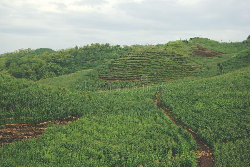 Vista das montanhas em Gunungkidul Indonésia imagens de stock
