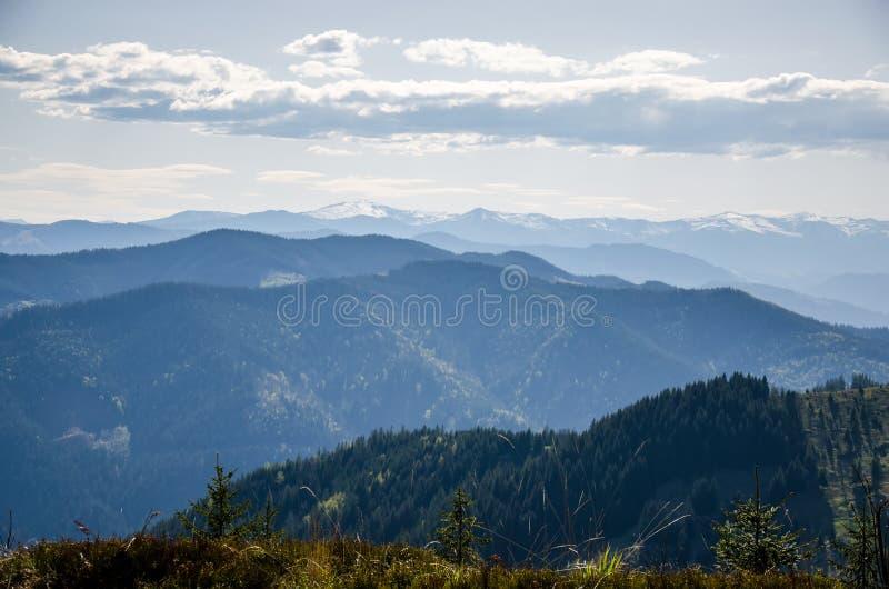 Vista das montanhas Goverla, Carpathians imagem de stock