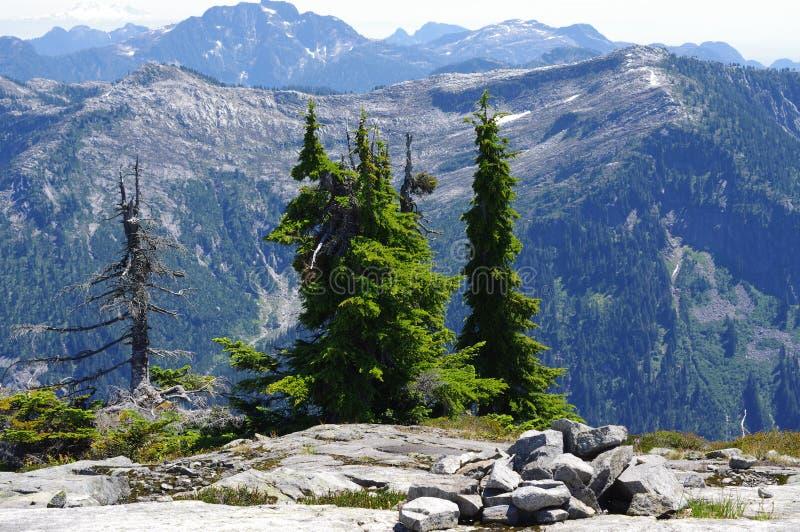 Vista das montanhas nortes da costa fotografia de stock royalty free
