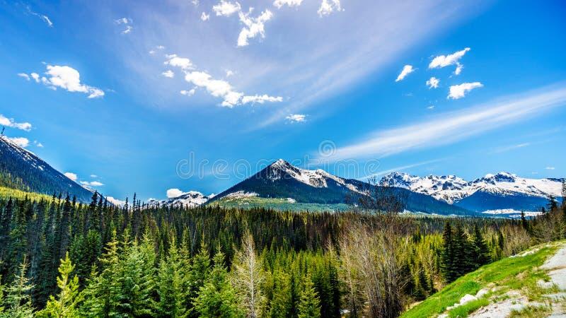 Vista das montanhas tampadas neve da costa ao longo da estrada 99, igualmente chamada a estrada do lago Duffey imagem de stock royalty free