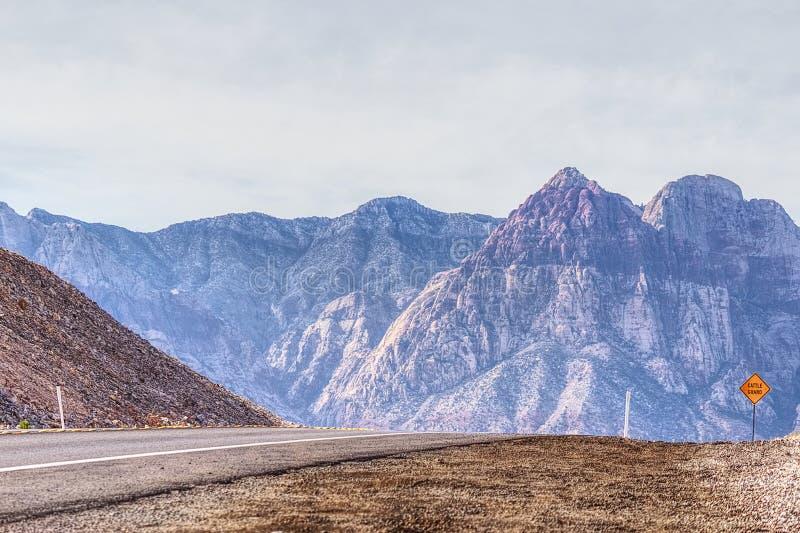 Vista das montanhas vermelhas da garganta da rocha fotos de stock royalty free