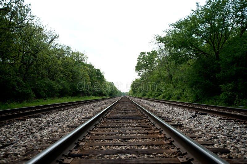 Vista das trilhas de estrada de ferro com árvores foto de stock