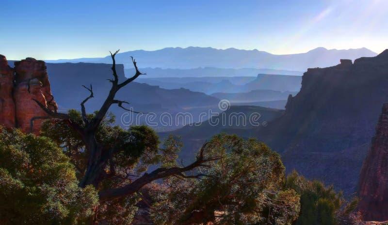 Vista de Canyonland do amanhecer foto de stock