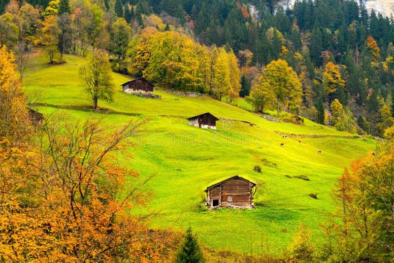 Vista de casas en las montañas suizas en otoño foto de archivo libre de regalías