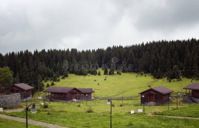 Vista de casas de madeira do platô alto fotos de stock royalty free